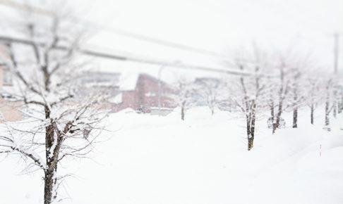雪国の風景